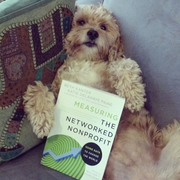 Post image for Book Review: Measuring the Networked Nonprofit